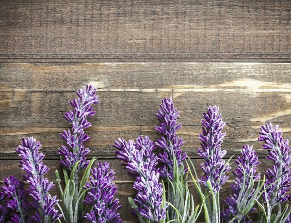 beneficios de la lavanda