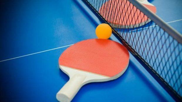 mesa de ping pong plegable