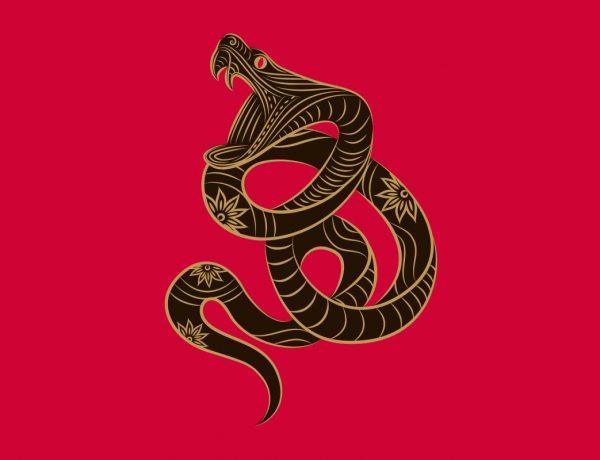 ludovica squirru horoscopo chino 2019 serpiente