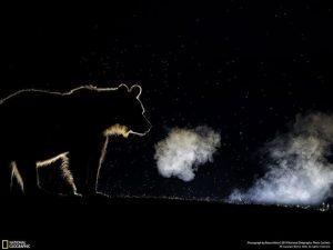foto nocturna respiracion