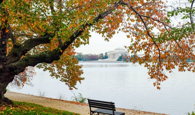 una escapada a washington
